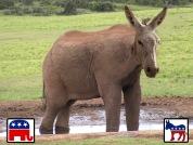 bipartisan-animal.jpg
